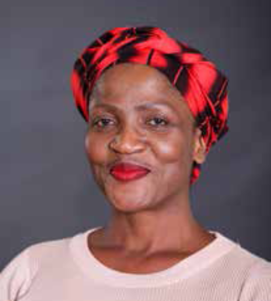 Profile picture: Zungu, Ms MP