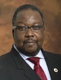 Profile picture: Nhleko, Mr N
