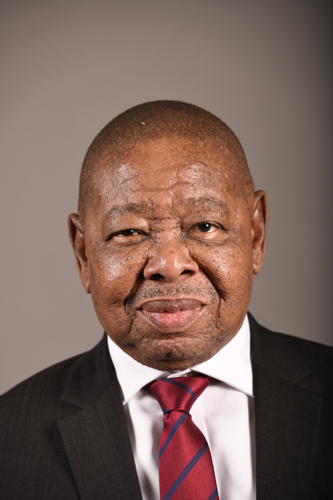 Profile picture: Nzimande, Dr BE